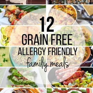 12+gluten+free,+grain+free+allergy+friendly+easy+family+meals12+gluten+free,+grain+free+allergy+friendly+easy+family+meals
