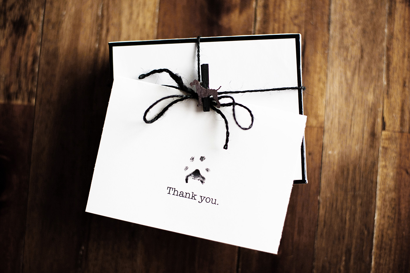 Thank You from the Dogs – Every day, care™