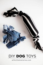 DIY Dog Toys – Every day, care™