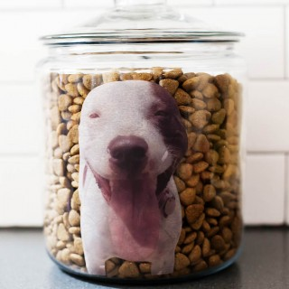 aftm-dog-food-1