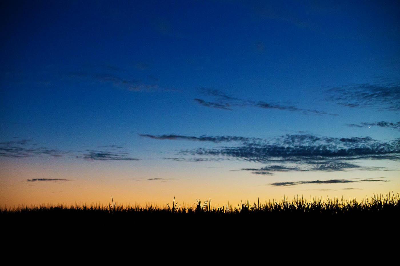 Tolmachoff Farms Corn Maze