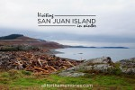 Traveling to the San Juan Islands in Winter