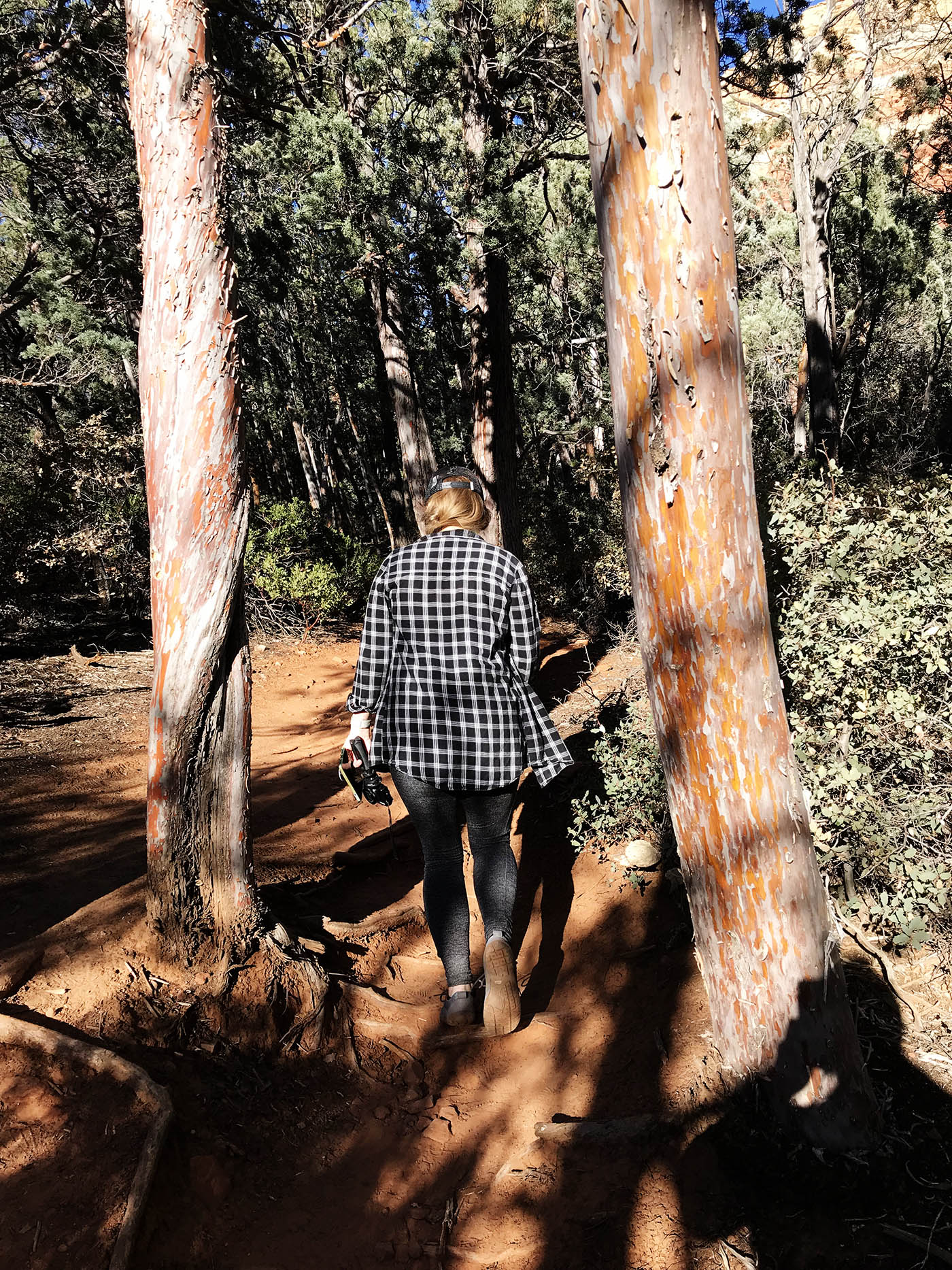 Soldier Pass Trail in Sedona, AZ - see the Devils Kitchen Sinkhole, Seven Sacred Pools, and Arches below Brins Mesa